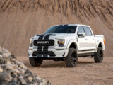 Ford Shelby F 150 2021